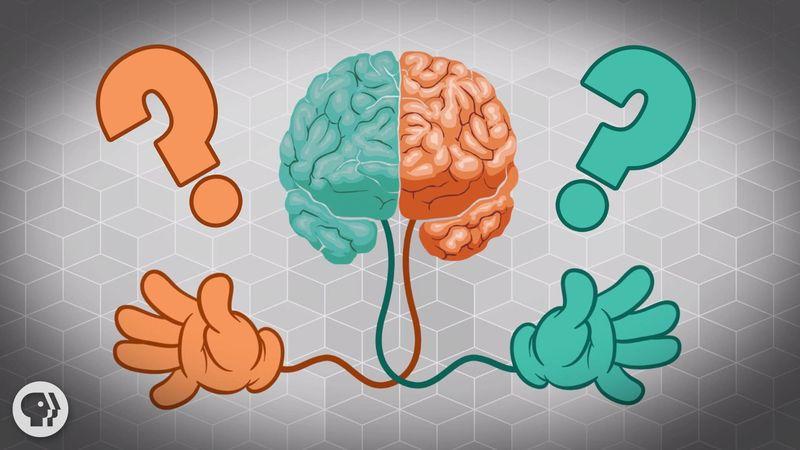 Mitől lesz valaki bal vagy jobbkezes? - utánajártunk a legújabb kutatásnak